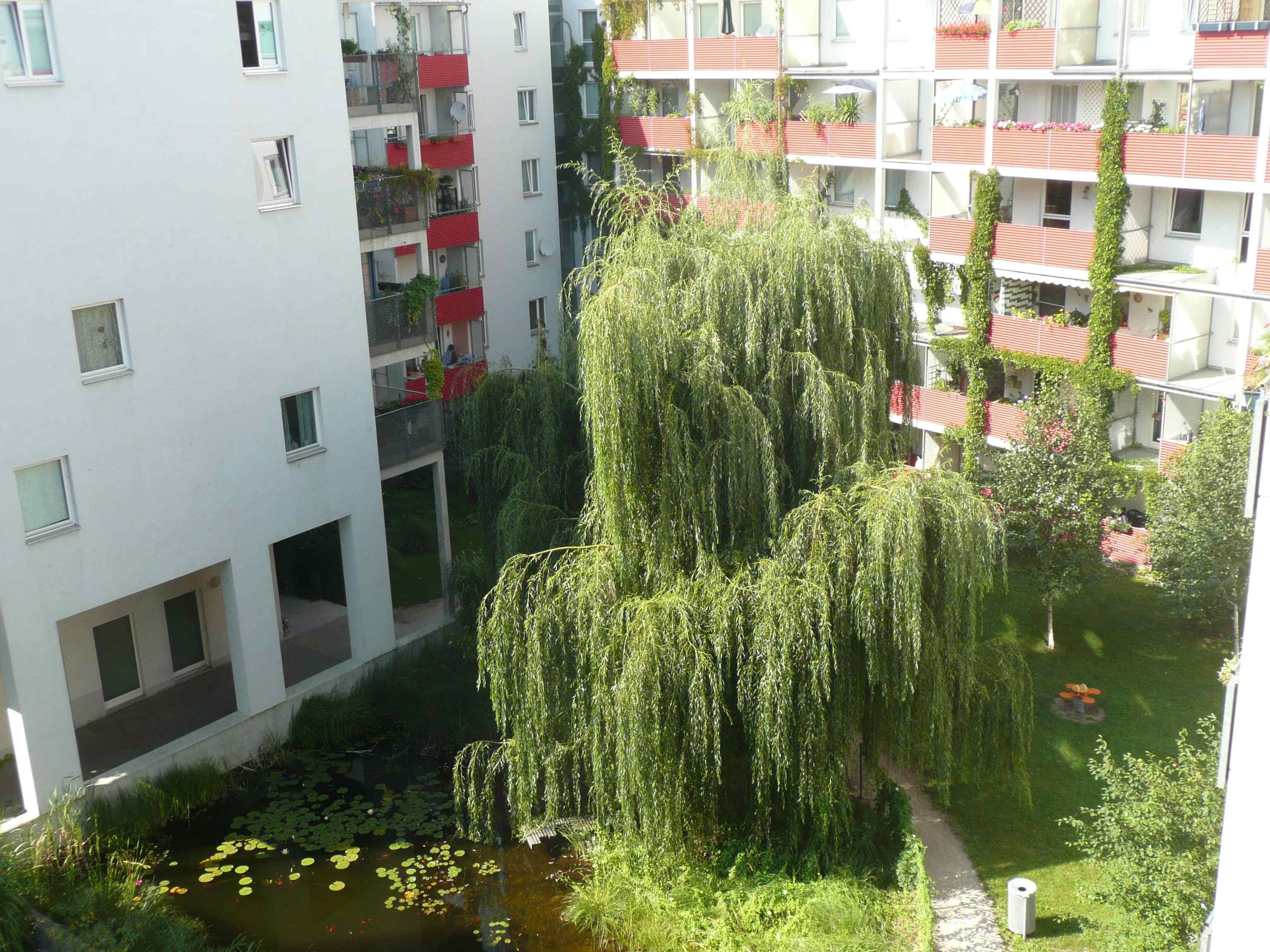 Siedlung13